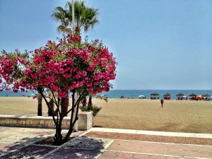 Marbella_Beaches2
